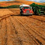 agricultura-en-bolivia