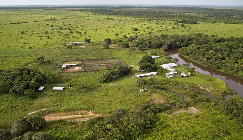 Campo en Huacaraje
