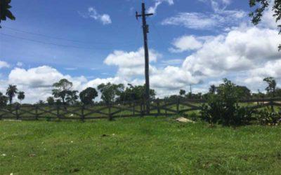 Campo en Santa Cruz, zona Concepción – VENDIDO
