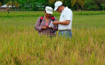 Expertos en fitopatología se reunieron en Bolivia