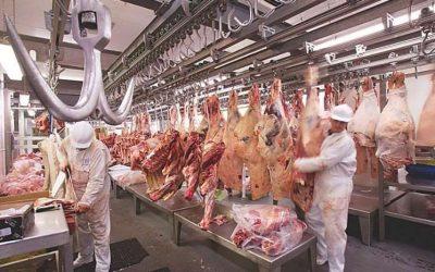 Bolivia obtiene estatus sanitario para explorar nuevos mercados de exportación de carne bovina