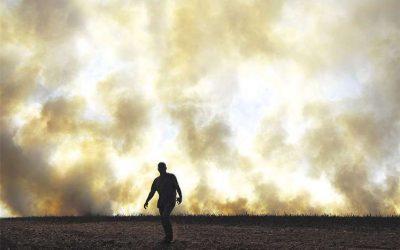 Devastación y duro combate al fuego en el Pantanal brasileño