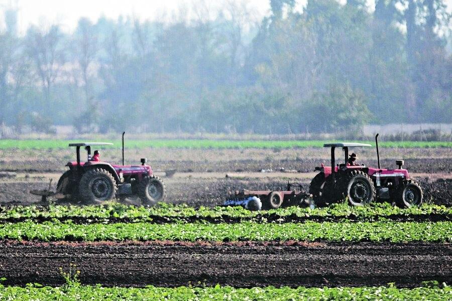 Irrupción de fondos de inversión y family offices dispara precios de predios agrícolas