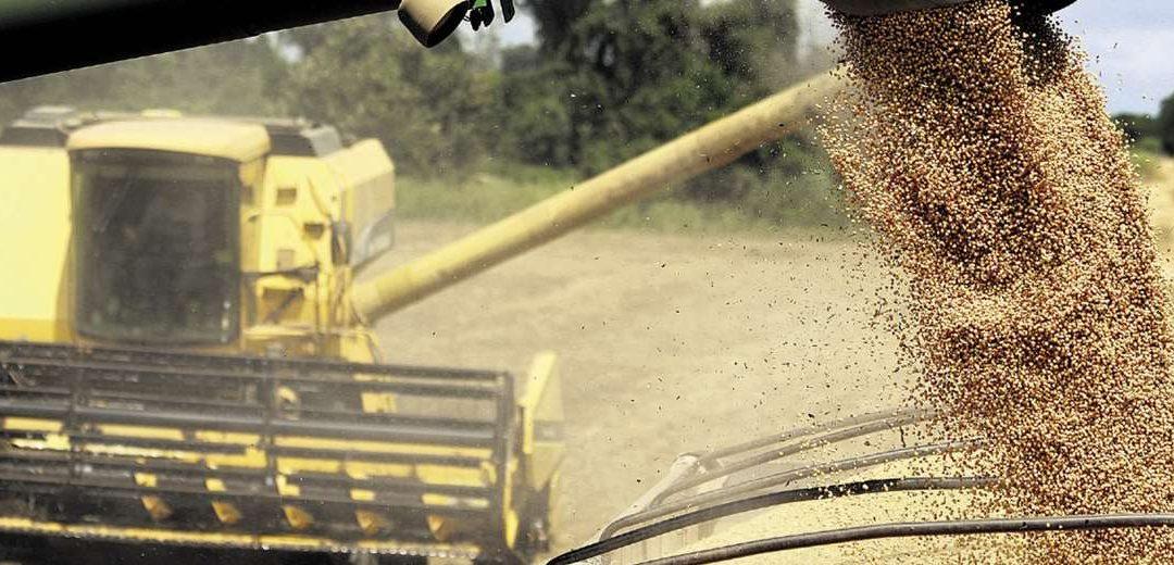 El agro ofrece duplicar empleos e ingresos por exportaciones si le dan condiciones